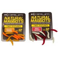 Korum Natural Maggots