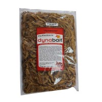 Dynabait Freeze Dried Blood worms